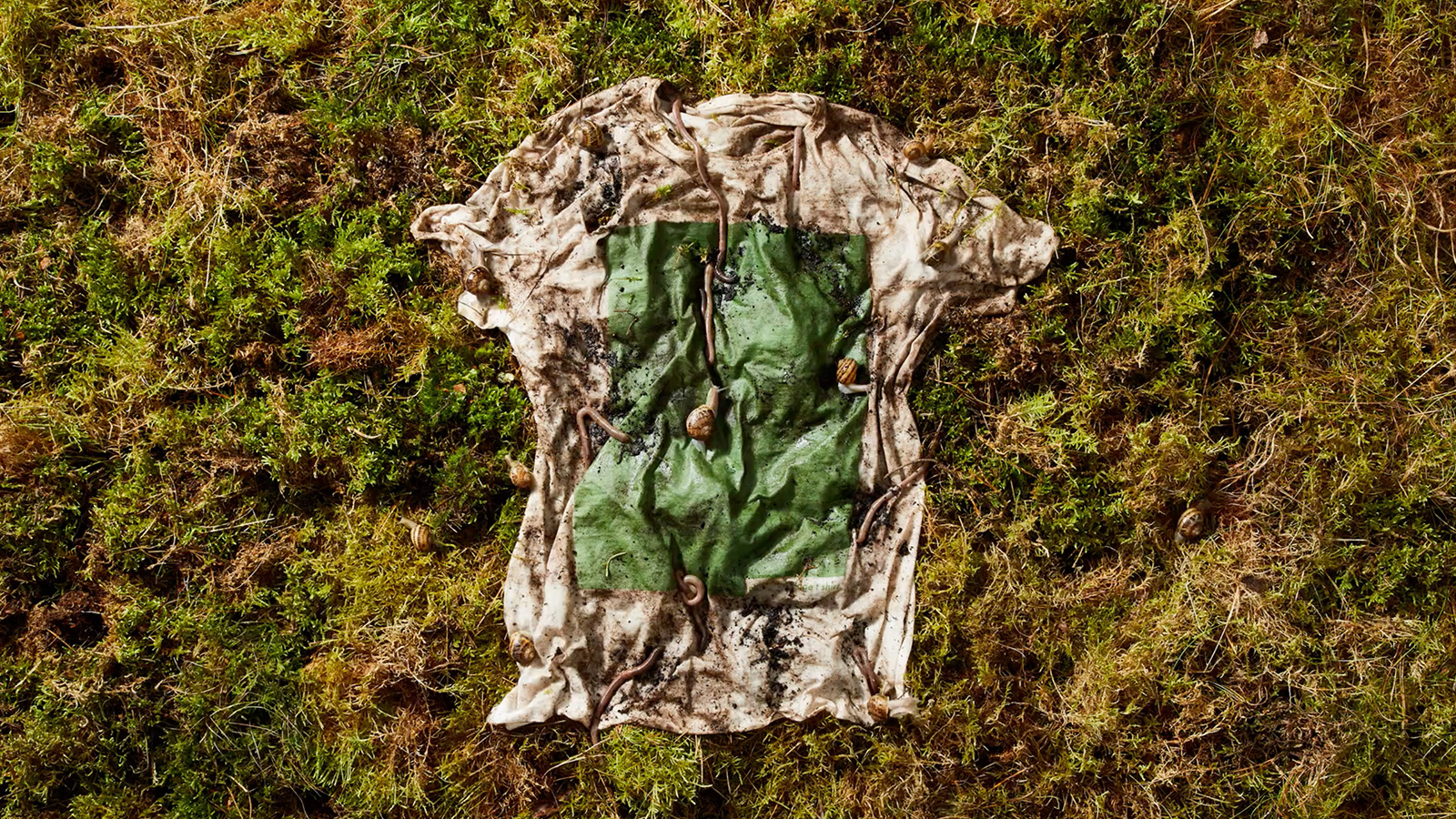 Vollebak Plant and Algae T Shirt